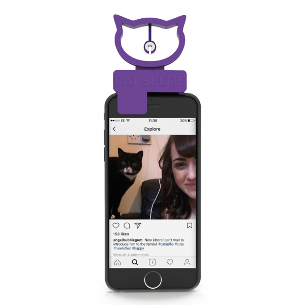 Thiết bị đơn giản không ngờ nhưng sẽ giúp mèo của bạn 'ngoan ngoãn' chụp hình selfie hàng giờ