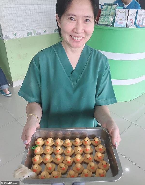 Chú chó ham ăn phải nhập viện phẫu thuật vì nuốt trọn... 32 con vịt cao su