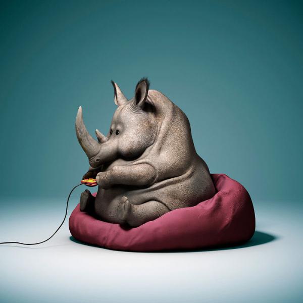 20 bức ảnh động vật 'chế giễu' thế hệ ngày nay đang lười biếng như thế nào