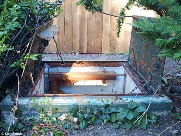 Đâu là những thứ lạ lùng nhất được tìm thấy ở sân sau nhà bạn?