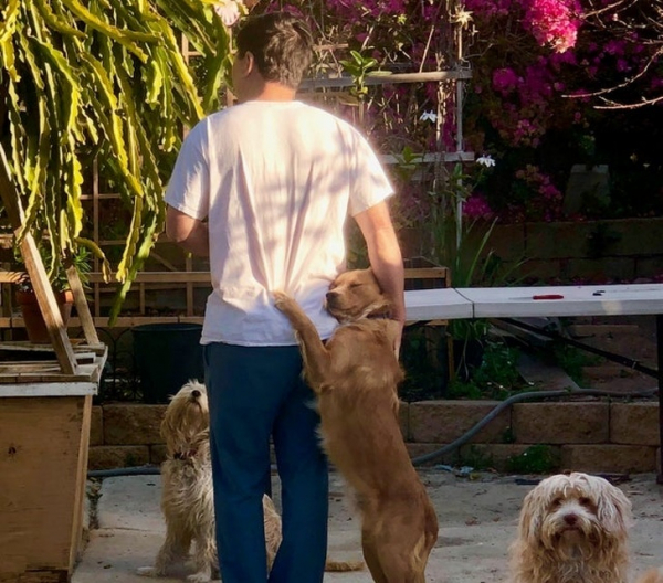 23 động vật này đã chứng minh rằng tình yêu của chúng dành cho chủ nhân là vô bờ bến