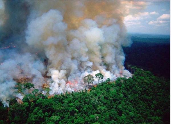 NASA công bố những hình ảnh mới nhất về tình trạng 'chưa bao giờ tồi tệ hơn' của rừng Amazon