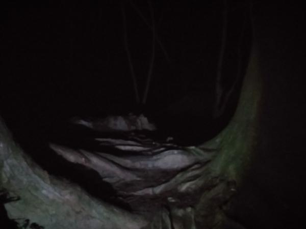 Theo chân 'phượt thủ' khám phá địa danh bị ám bởi Tửu Thôn Đồng Tử - con quỷ đáng sợ nhất Nhật Bản