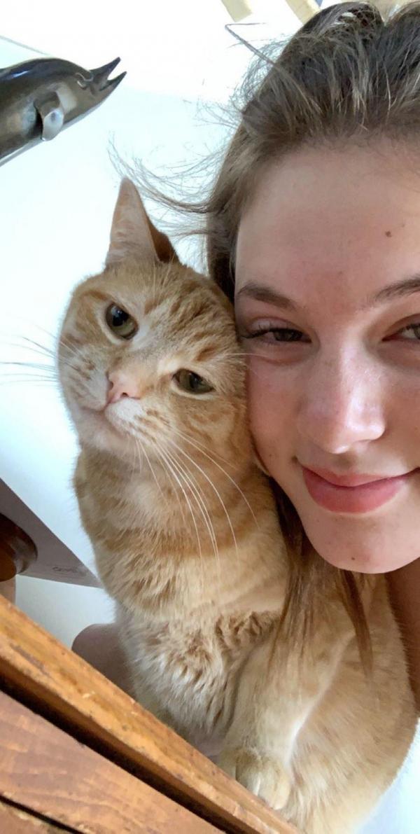 Chú mèo trở nên nổi tiếng sau khi thực hiện thử thách Mr. Sandman
