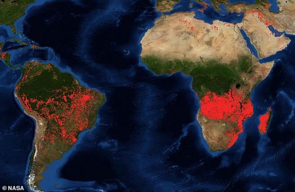 Rừng Amazon chưa được dập lửa thì đến rừng châu Phi cháy dữ dội hàng trăm kilomet