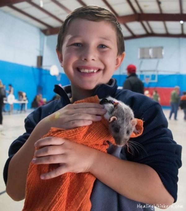 Chú chuột trị liệu dễ thương giúp trẻ em học đọc