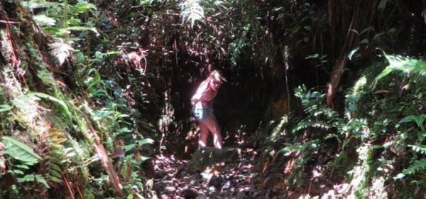 Hai cô gái đi vào rừng rồi biến mất và hàng chục bức hình bí ẩn còn sót lại