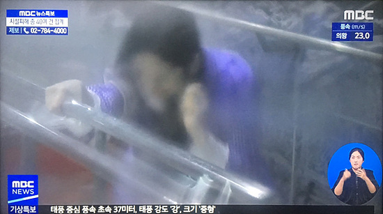 Người Hàn hoảng sợ trước cảnh nữ MC lấy thân mình thí nghiệm sức gió của siêu bão Lingling