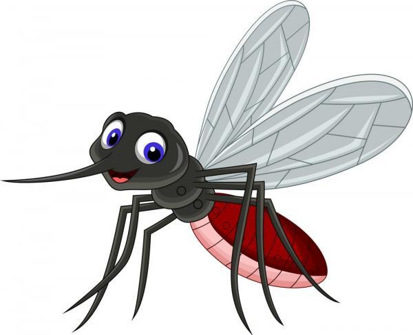 Vì sao có người liên tục bị muỗi cắn, còn những người khác thì muỗi chẳng đoái hoài?
