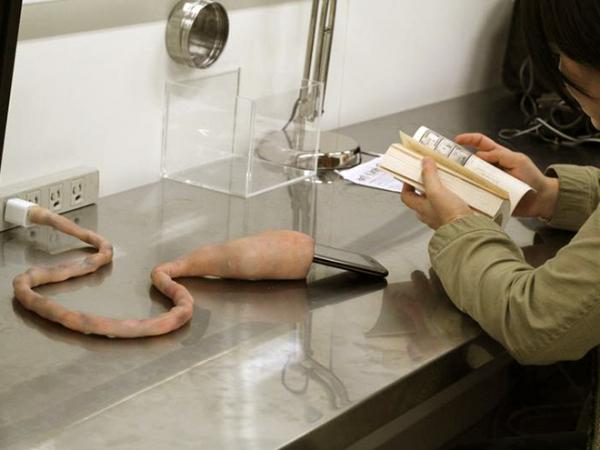 Bộ sạc iPhone mô phỏng... dây rốn, có thể cựa quậy y như sinh vật sống