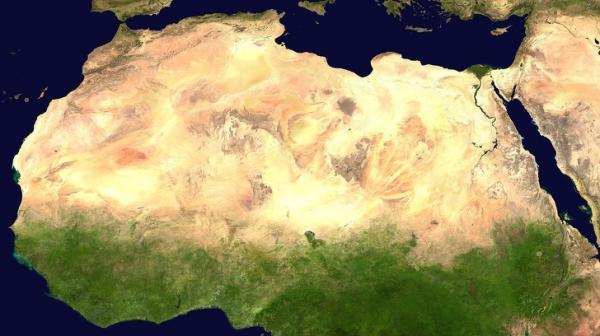 Người dân Châu Phi xây 'bức tường xanh' giải cứu thế giới