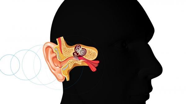 Tại sao người ta không nhận ra giọng nói của mình, thậm chí còn chán ghét khi nghe lại nó?