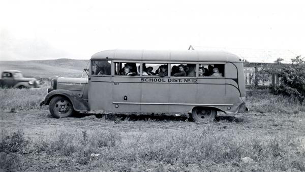 Tại sao xe buýt đưa đón học sinh ở Mỹ lại màu vàng?