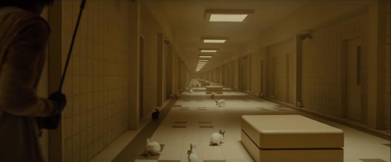 Dân mạng soi ra loạt giả thuyết phức tạp ẩn trong trailer phim kinh dị 'Us' của đạo diễn 'Get Out'