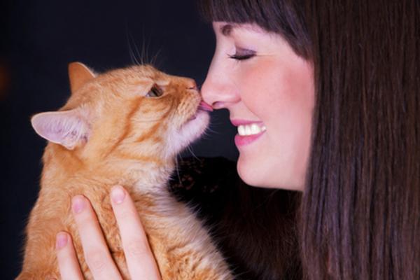 Vài vết liếm yêu của thú cưng cũng có thể dẫn đến cái chết cho chủ nhân