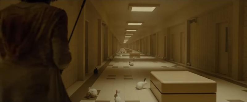 Soi kỹ 'Us' của Jordan Peele: Giải mã những chi tiết siêu thâm thúy mà nhiều người dễ bỏ qua